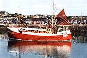 Newlyn Fishing Boat in Harbour